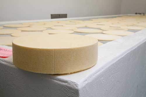wheel of cheese
