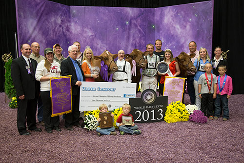 International Milking Shorthorn Show Champions 2013