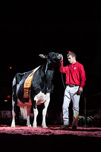 2014 Supreme Champion of the Junior Show at World Dairy Expo