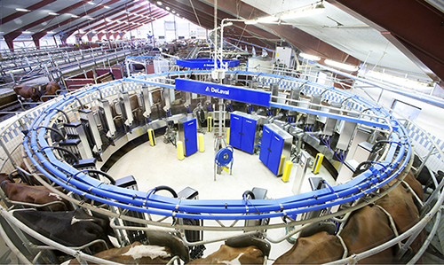 rotary milking parlor