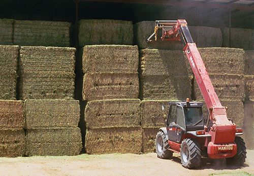 hay stacking